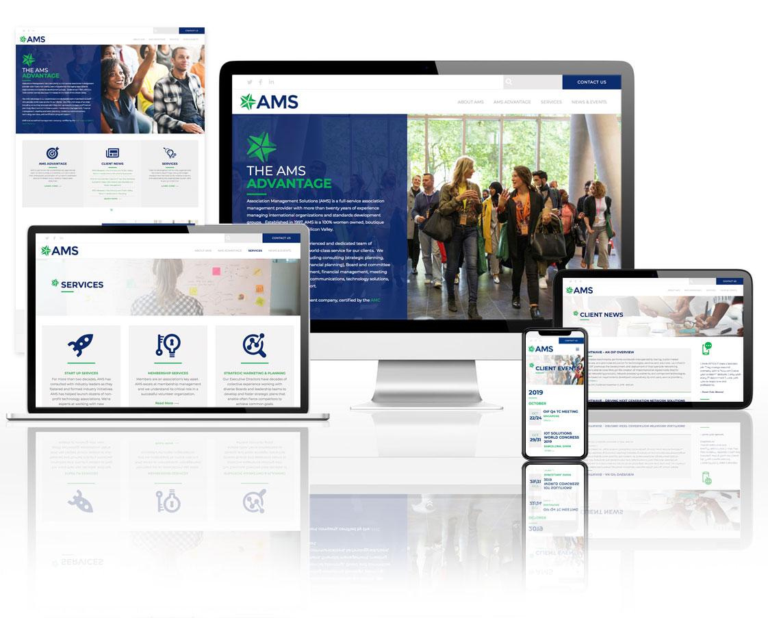 Associated Management Services Website Design
