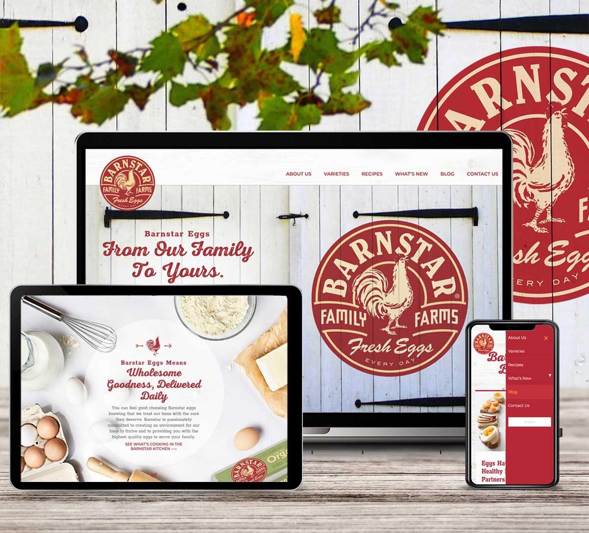 Website Design for Barnstar Eggs